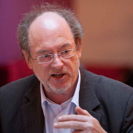 Prof. Dr. Birger Priddat
